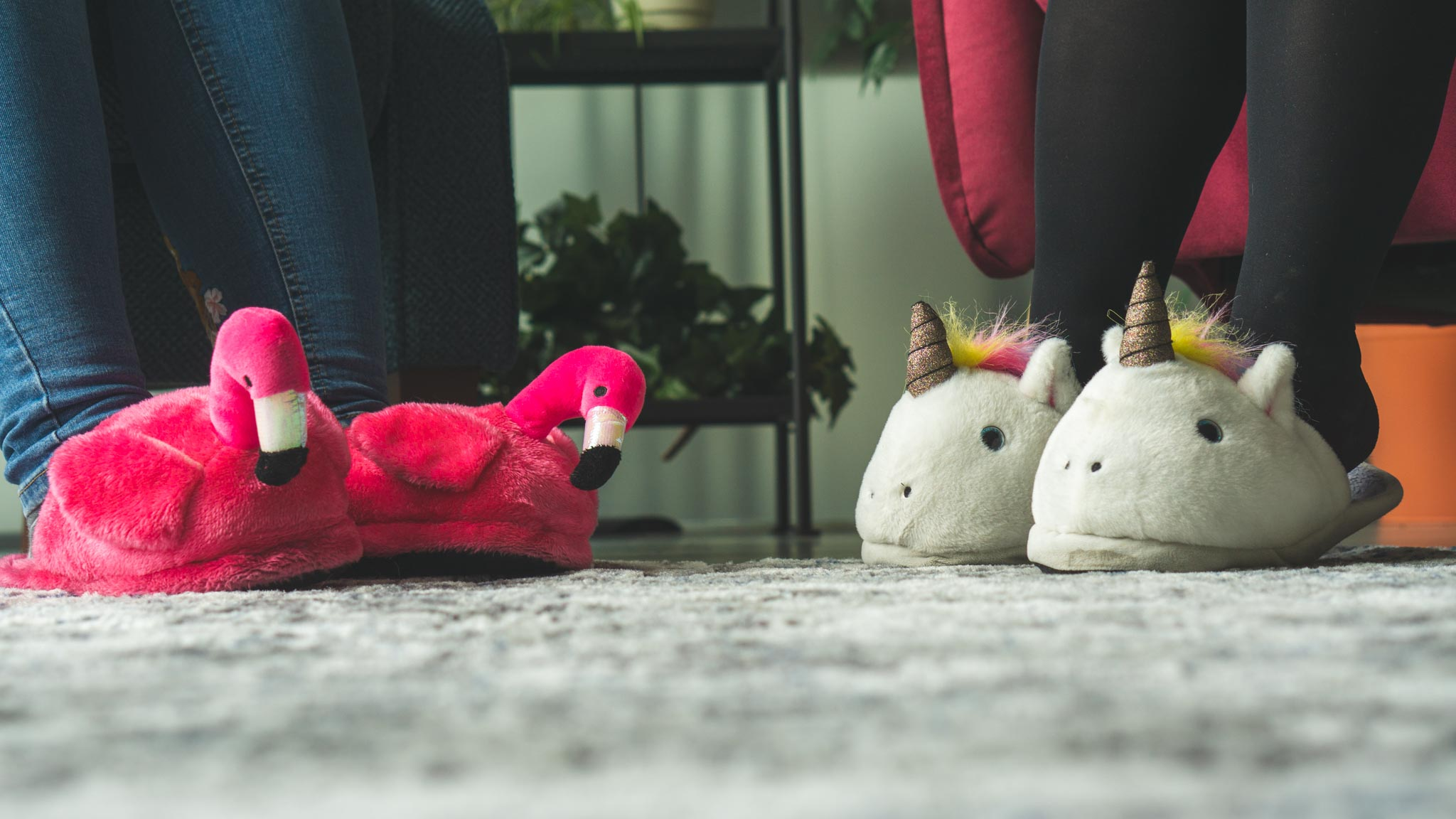 Merixstudio comfy atmosphere and cool slippers