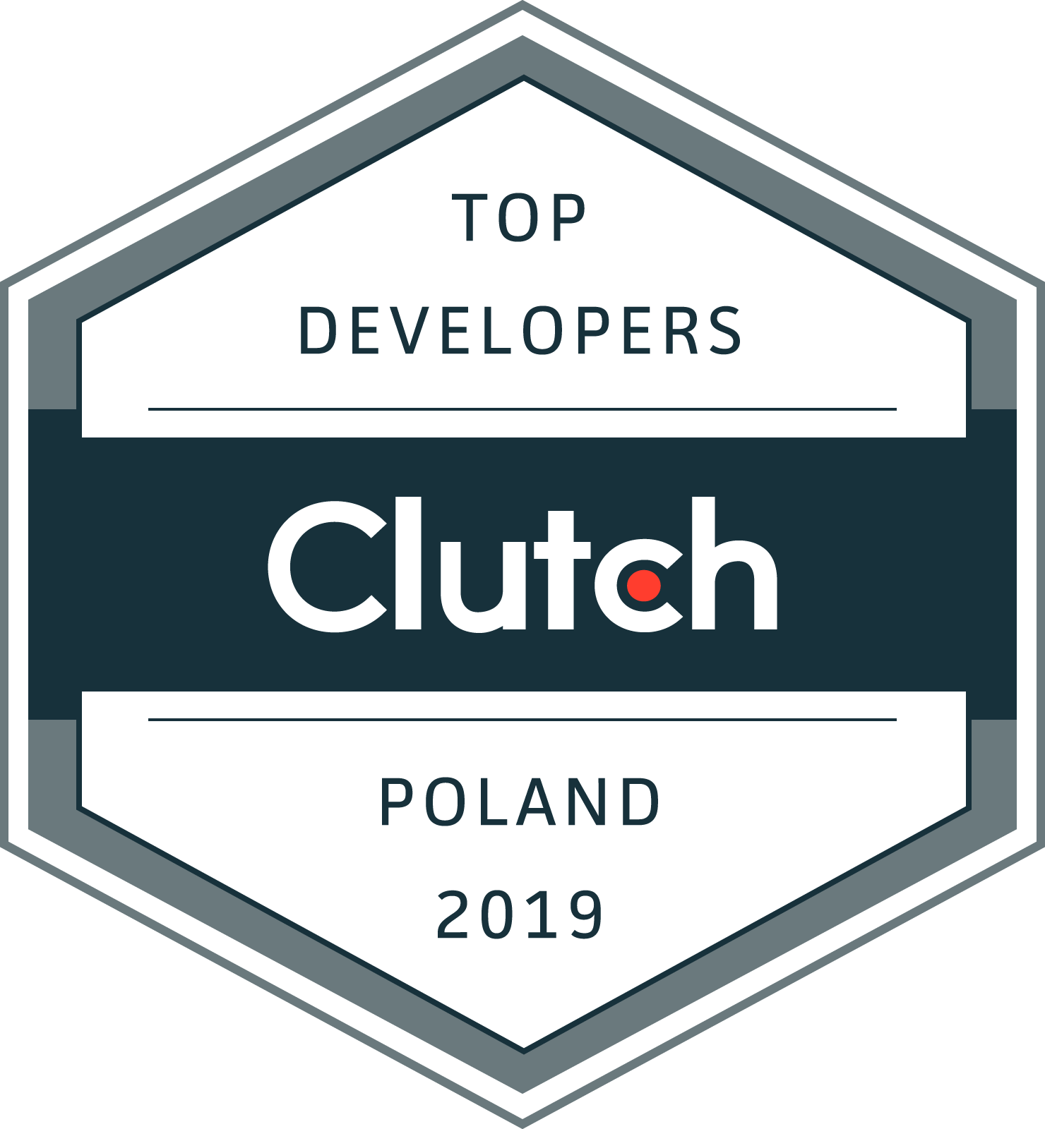 Top Poland Custom Software Developers