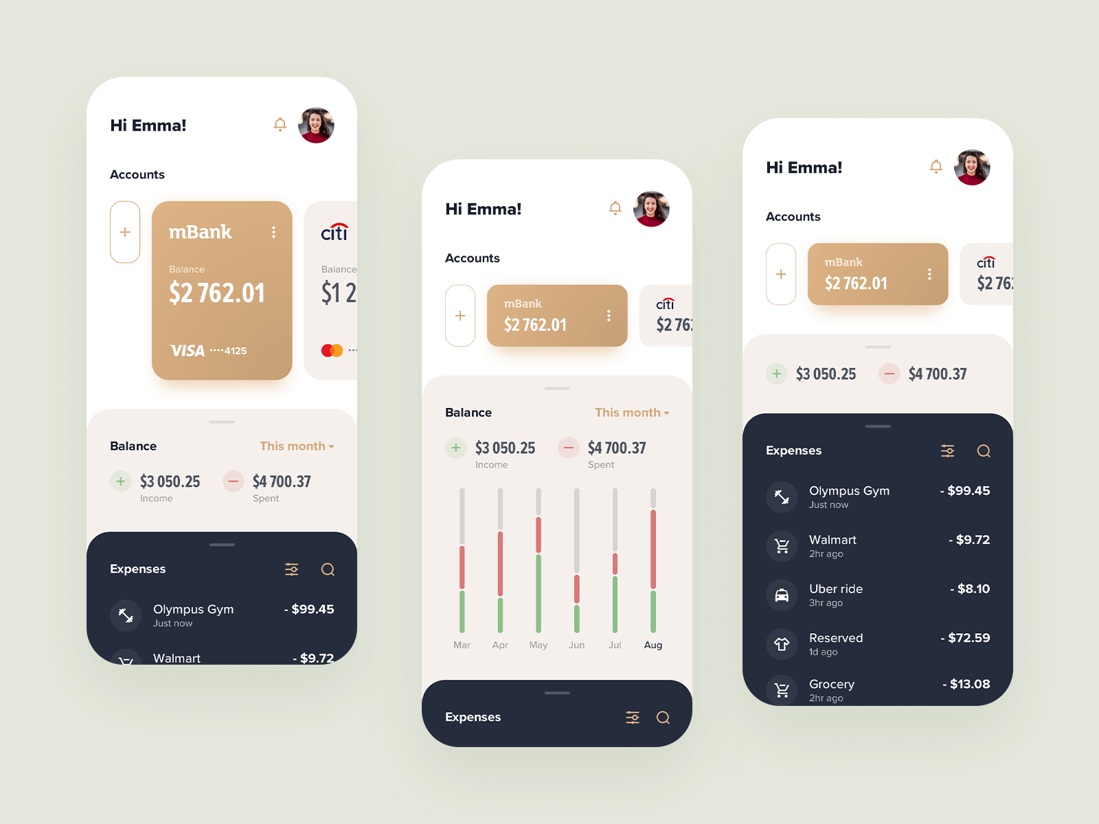 Home Budget fintech app concept design