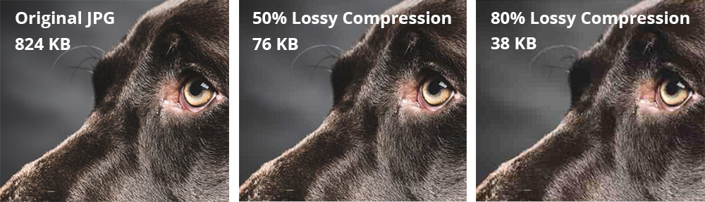 Lossy compression examples