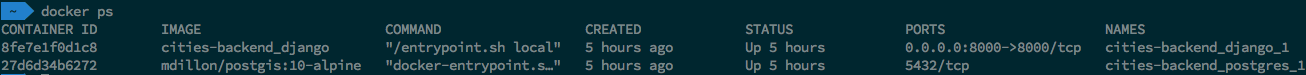 A result of executing docker ps